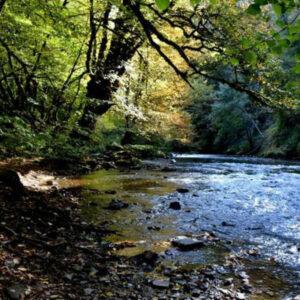 Petite Creuse River Scene